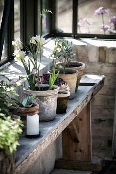 earthy pots on a rustic table