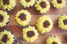 Sunflower Cupcakes using simple buttercream and chocolate chips   Chocolate Cupcakes Recipe