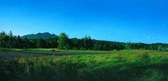 Fields in july Oil on canvas 28x48in