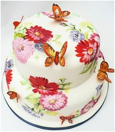 Gorgeous Butterfly Cake