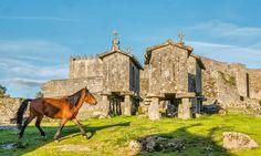 Espigueiros e Castelo de Lindoso, Ponte da Barca #Portugal #portugal_lovers #unlimitedportugal #lindoso #pontedabarca #horse #espigueiros #nortedeportugal #nortedeportugal #medieval #castle #castillo #castelo #minho #onortemarca #visitportugal