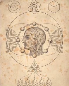 La consciencia .... #psychedelicmindscom psy-minds.com