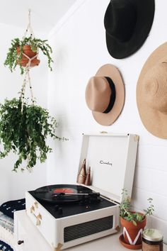 Bringing the Outdoors In: Indoor Plant Care with New Darlings