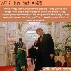 Donald Trump in Home Alone 2 - WTF fun facts