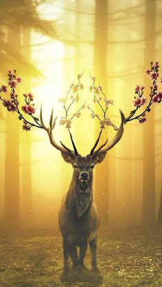 Deer Digital Art HD Mobile, Smartphone and PC, Desktop, Laptop wallpaper - My best wallpaper list Frühling Wallpaper, Laptop Wallpaper, Animal Wallpaper, Spring Wallpaper Hd, Forest Wallpaper, Mythical Creatures Art, Fantasy Creatures, Spring Forest, Deer Art