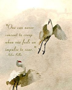 Don't Creep When You Need to Soar:  A Fine Art Watercolor Bird Print with a Helen Keller Quote