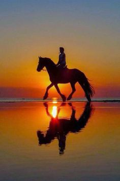 Riding in the beach by the sunset, #Ribatejo region - Portugal