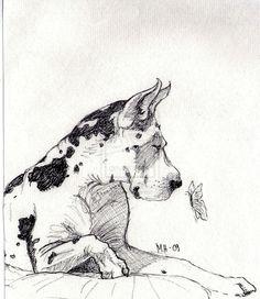 """""""Harlequin Great Dane""""  ~~  Artist ~Ruttonen~  September 14 2010"""