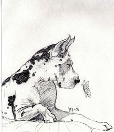 Harlequin Great Dane by Ruttonen on DeviantArt