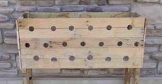Sie bohrt 19 Löcher in eine Holzkiste. 5 Monate später fällt uns die Kinnlade herunter.