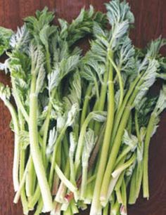Cooking with Wild Plant Stems
