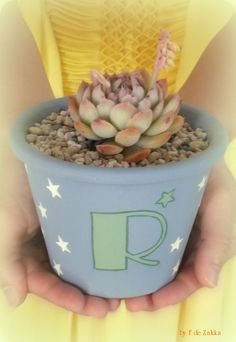 hand painted flower pot with the succulent plant.
