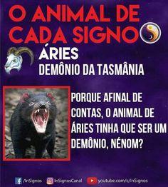 Read Animal De Cada Signo from the story Signos by Sexytaekookv (𝙶𝙰𝚃𝙸𝙽𝙷𝙰) with reads. Sobre Aries, Arte Aries, Mbti, Tarot, Zodiac Signs, Cancer, Funny Memes, Humor, Wattpad