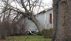 , March 2020 — In response to the devastation caused by the recent tornadoes in Tennessee, Walmart and the Walma. Community Foundation, Cheapest Insurance, Emergency Response, Tornadoes, People Around The World, Destruction, Walmart, March 6