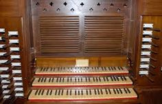 Risultati immagini per organo