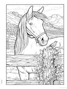 Horse Coloring Pages, Coloring Pages To Print, Colouring Pages, Coloring Sheets, Coloring Books, Mandala Coloring, Free Horses, Printable Adult Coloring Pages, Sketches