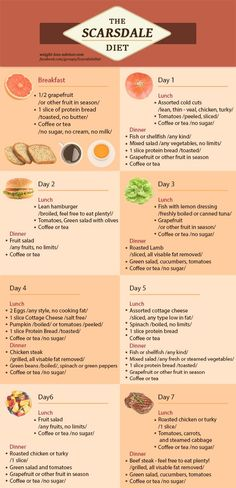 scarsdale diet infographic