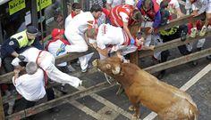 Sanfermines 2014 miuras: San Fermín, día 8 | Fotogalería | Cultura | EL PAÍS