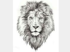 Best Lion Tattoo Collection - best tattoo - best tattoo for women - be Small Lion Tattoo, Lion Head Tattoos, Mens Lion Tattoo, Leo Tattoos, Future Tattoos, Animal Tattoos, Body Art Tattoos, Lion Thigh Tattoo, Lion Tattoo On Back