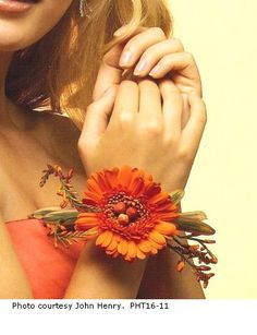 Beautiful for fall - Orange Gerbera Wrist Corsage - Looks great on the guys tuxs… Prom Flowers, Bridesmaid Flowers, Wedding Flowers, Wedding Colors, Wedding Stuff, Bridesmaids, Flower Corsage, Wrist Corsage, Prom Corsage