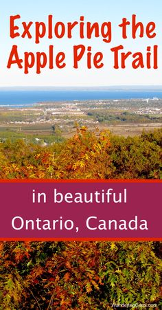 Looking for things to do in Collingwood, Ontario? The year-round Apple Pie Trail is a fun way to explore the Blue Mountains and Southern Georgian Bay. Oh The Places You'll Go, Places To Travel, Day Trips, Weekend Trips, Ontario Travel, Ontario Camping, Calgary, Canadian Travel, Canadian Rockies
