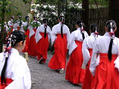 """Shinto priestesses / Shinto, meaning """"the way of the gods"""", is Japan's indigenous religion, and is practiced by about 83% of the population."""