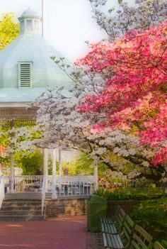 Ligonier in the spring is all about dogwoods, tulips and the gazebo! © Larry Webster Photography