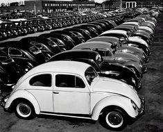 All pictures by Peter Keetman, 1953 via: http://www.retronaut.com/2013/04/volkswagen-factory/