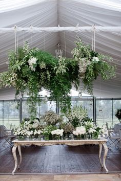 This is a wedding venue but I love the idea of hanging plants across the room this way.  I love plants & I have cats that love to destroy plants.  This is win win