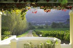 Auberge Clermont Cape Town, Places, Ideas, Thoughts, Lugares