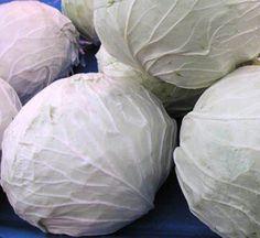 Zayıflatan beyaz lahana kürü sayesinde çok hızlı bir şekilde kilo verebileceksiniz !