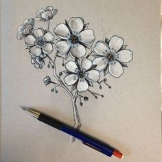 Image result for japanese cherry blossom pencil drawing