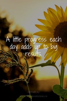 Inspirational Quotes // A little progress each day adds up to big results.
