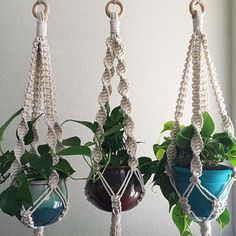 Brown cord macrame plant hangers with blue and brown flower pots