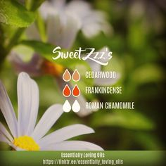 """Sweet Zzz's - Diffuser Blend , """"Sleep has been provided by nature to do the body's healing work, and it takes seven or eight hours for this… Essential Oils For Sleep, Essential Oil Scents, Essential Oil Diffuser Blends, Essential Oil Uses, Doterra Essential Oils, Young Living Essential Oils, Herbal Oil, Young Living Oils, Nature"""