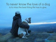 I love my dog Love My Dog, Puppy Love, All Dogs, Best Dogs, Dogs And Puppies, Doggies, Dog Rules, Animal Quotes, Pet Quotes