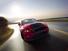 Find out more about the Ford Shelby Mustang Performance and just why its powerful engine and superb braking ability have everyone abuzz. New Mustang, 2017 Ford Mustang, Ford Mustang Shelby Gt500, Ford Shelby, Ford Mustangs, 2014 Shelby Gt500, Mustang Engine, Modern Muscle Cars, Ford Classic Cars