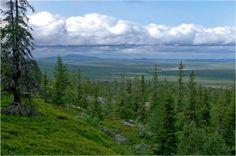 Lappi / Pyhä-Luoston kansallispuisto