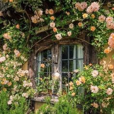 Cottage In The Woods, Cottage Style, Nature Aesthetic, Aesthetic Green, Aesthetic Pictures, Beautiful Places, Scenery, Decoration, Plants