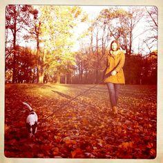 Dog  Emmi & Ich