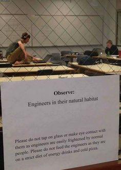 engineers_2.jpg