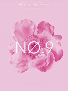 Pink Botanicals No.9 // The Botanical Series