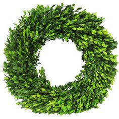 allen + roth Natural Green Preserved Boxwood Wreath