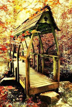 Autumn footbridge ~ photo by Heather Jolley Bridenstine