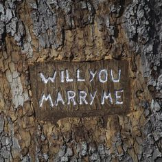 With this year of unusual days and traditions, why not get creative with your Leap Year Proposal. We've been searching on Pinterest  for some non-traditional proposal ideas and here's our Top 5! Form Bespoke Jewellers, Leeds, Yorkshire #proposal #engagement #bespokering
