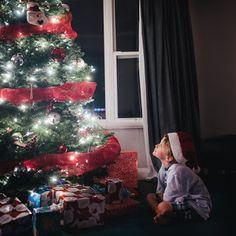 Google+ Christmas Tree, Holiday Decor, Google, Photography, Home Decor, Teal Christmas Tree, Photograph, Decoration Home, Room Decor