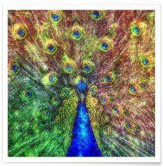 Peacock als Premium Poster von Ancello | JUNIQE