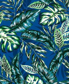 #patternbankdesigner » patternbank.com/katerinagri – Here is my new tropical foliage pattern on #patternbank. Seamless graphical hand drawn artistic dense tropical foliage pattern, monstera leaf, philodendron, split leaf, banana leaves, areca palm leaves. Contrast vivid summer tropic plants print. Included in the Extended Licence option is: - PSD file with design in layers; - 6 colorway options in JPEG format (background: black; orange; terracotta; khaki; violet; green); IG: @katya.grib