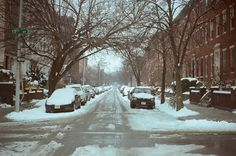 Eco-friendly ideas for cleaning up mother nature's winter wrath