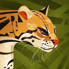 Illustration of Dieter Braun , Big Cats Art, Cat Art, Animal Drawings, Art Drawings, Wildlife Art, Animal Design, Oeuvre D'art, Art Inspo, Vector Art